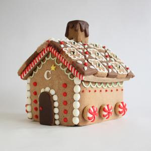 C'S HOUSE.jpg